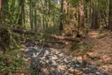 7930 Sonoma Mountain Road - Photo 53