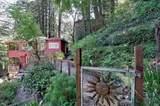 143 Redwood Avenue - Photo 51