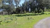 2955 Old Bennett Ridge Road - Photo 4