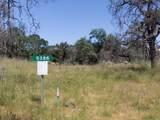 5386 Blue Ridge Trail - Photo 3