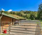 700 Nicasio Valley Road - Photo 10
