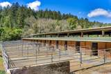 700 Nicasio Valley Road - Photo 11