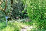 700 Nicasio Valley Road - Photo 21