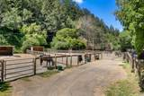 700 Nicasio Valley Road - Photo 7