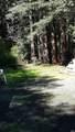1901 Seabiscuit Drive - Photo 3