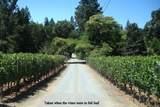102 Lilac Lane - Photo 2