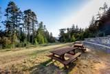 33901 Carson Hill Road - Photo 41