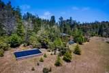 33901 Carson Hill Road - Photo 47