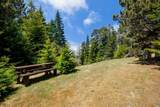 33901 Carson Hill Road - Photo 48