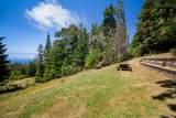 33901 Carson Hill Road - Photo 49