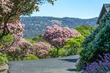 5550 Plum Ranch Road - Photo 44