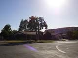 14 Lemon Tree Circle - Photo 57