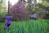 21451 Orr Springs Road - Photo 13