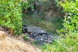 5373 Dry Creek Road - Photo 30