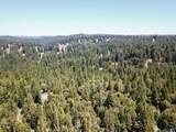 3611 Flynn Creek Road - Photo 24