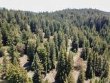 3611 Flynn Creek Road - Photo 37