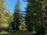 3611 Flynn Creek Road - Photo 38