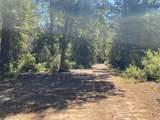 3611 Flynn Creek Road - Photo 40