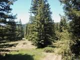 3611 Flynn Creek Road - Photo 41