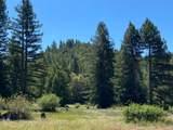 3611 Flynn Creek Road - Photo 45