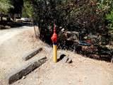 2655 Harness Drive - Photo 48