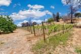 6973 Saint Helena Road - Photo 51