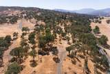 17277 Butts Canyon Road - Photo 22