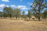 17277 Butts Canyon Road - Photo 44