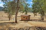 17277 Butts Canyon Road - Photo 45