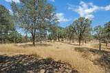17277 Butts Canyon Road - Photo 48