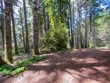 35204 Fly Cloud Road - Photo 12