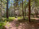 35204 Fly Cloud Road - Photo 20