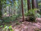 35204 Fly Cloud Road - Photo 22
