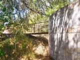 1181 Buckhorn Road - Photo 74