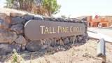 1997 Tall Pine Circle - Photo 8