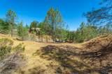 1268 Steele Canyon Road - Photo 10