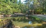 8676 Palmer Creek Road - Photo 16