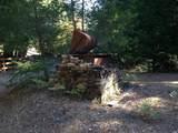 8676 Palmer Creek Road - Photo 17