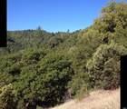 8676 Palmer Creek Road - Photo 18