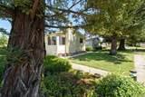 1509 Royal Oak Drive - Photo 6