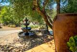 2336 Stagecoach Canyon Road - Photo 11