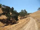 3854 Paradise Valley Road - Photo 28