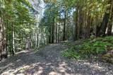 66 Magic Mountain Road - Photo 59