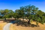 24000 Fig Tree Lane - Photo 48