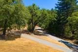 24000 Fig Tree Lane - Photo 49