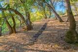 24000 Fig Tree Lane - Photo 61