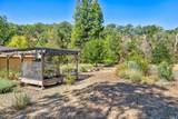 8 Turtle Creek Drive - Photo 19