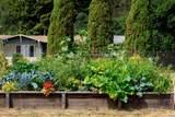 4059 Old Sonoma Road - Photo 12