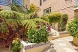 15 Buena Vista Terrace - Photo 42