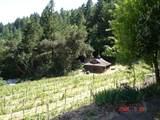 3505 Spring Mountain Road - Photo 55